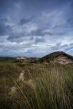 Havslandskap på den tyska ön Arkivbild