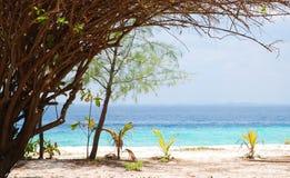 Havslandskapbakgrund royaltyfri fotografi