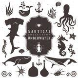Havsliv, marin- djur Drog beståndsdelar för tappning hand stock illustrationer