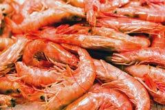 Havsmat - röd scampi Arkivfoto