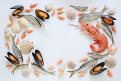 Havsmatsammansättning Arkivfoton