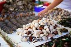 Havsmusslor på traditionell skaldjur marknadsför Royaltyfri Fotografi