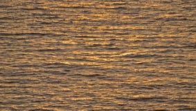 havsolljuswaves Arkivbild