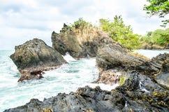 Havspölen Fotografering för Bildbyråer
