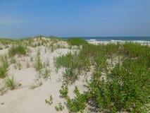 havssida Fotografering för Bildbyråer