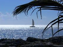 Havssikt i Barbados Arkivfoton