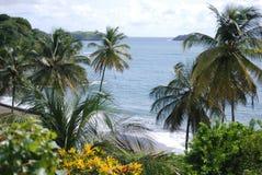 Havssikt, landskap, Tobago ö Royaltyfria Bilder