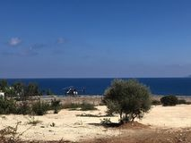 Havssikt med buskar och en helikopter royaltyfria bilder