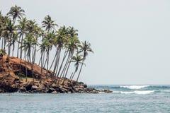 Havssikt på kokospalmkullen royaltyfri bild