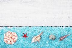 Havsskal med salt sommarbakgrund Arkivbild