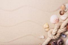 Havsskal och rep på sand royaltyfri bild