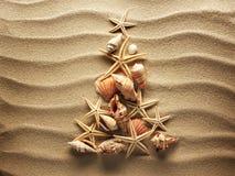 Havsskal på sand Arkivbilder