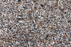 Havsskalbruk som bakgrund Royaltyfria Foton