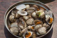 Havsskaldjur som lagas mat på en lägereld på stranden Royaltyfria Bilder