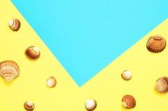 Havsskalmodell p? turkos och gul pappers- bakgrund sommar f?r sn?ckskal f?r sand f?r bakgrundsbegreppsram Lekmanna- l?genhet, b?s royaltyfri fotografi