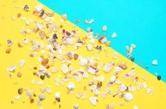 Havsskalmodell p? turkos och gul pappers- bakgrund sommar f?r sn?ckskal f?r sand f?r bakgrundsbegreppsram royaltyfri bild