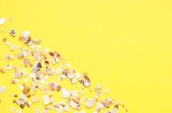 Havsskalmodell p? turkos och gul pappers- bakgrund sommar f?r sn?ckskal f?r sand f?r bakgrundsbegreppsram Lekmanna- l?genhet, b?s royaltyfri bild