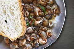 Havssniglar som lagar mat i en panna Arkivbilder