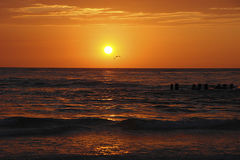 havssolnedgång Arkivbild