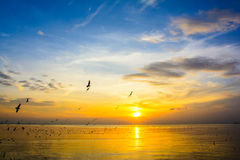 Havssolnedgång 6 Arkivfoto
