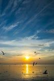 Havssolnedgång 3 Arkivfoton