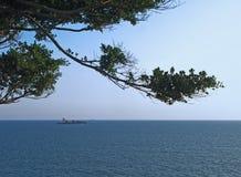 havssommar Arkivfoto