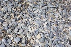 Havsstenar eller den våta släta svarta stenen på stranden som backgro Royaltyfria Foton
