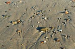 Havsstenar i sanden, havskusten med stenar och sand Arkivbild