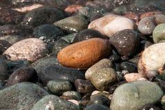 Havsstenar i solig dag Royaltyfri Bild