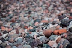 Havsstenar i solig dag Arkivfoto