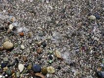 Havsstenar som bakgrund Arkivfoto