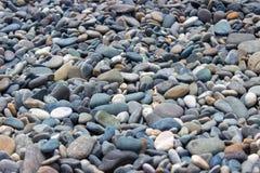 Havsstenar, textur av havsstenar Strand Arkivbilder