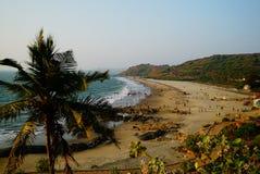 Havsstrand med palmträdet på förgrunden Arkivfoton