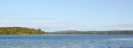 Havsstrand och flodträd Arkivfoto