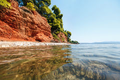 Havsstranden med rött jord och sörjer träd i Grekland, Halkidiki Arkivfoton
