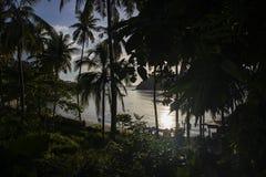 Havsstrandsikt till och med palmträd Solnedgångsikt på den tropiska stranden med mörka konturer av cocopalmträd arkivfoto