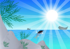 havssun Arkivfoton