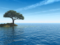 havstree Arkivfoton