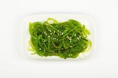 Havsväxtsallad på den lilla vita maträttplattan Royaltyfri Foto