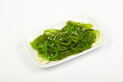 Havsväxtsallad på den lilla vita maträttplattan Royaltyfria Bilder
