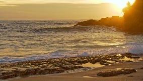 Havsvågor och stenig kust på solnedgången stock video