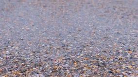 Havsvågor på sandstranden med små skal, lugna hav lager videofilmer