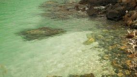 Havsvågor som kraschar på stenig kust Sand och stenar kan ses igenom vattnet arkivfilmer