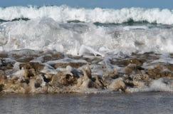 Havsvågor stänger sig upp royaltyfri fotografi