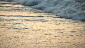 Havsvågor tvättar sanden på kusten Dunkelt ljus i aftonen gryning Slowmotion stock video