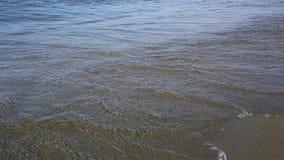 Havsvågor tvättar sandstranden arkivfilmer