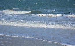 Havsvågtapet Fotografering för Bildbyråer