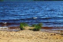 Havsvatten för mörk färg som plaskar för att sandpappra stranden på sommardag arkivbilder