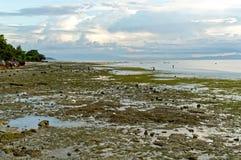 Havsvatten går tillbaka i eftermiddagen Royaltyfri Bild