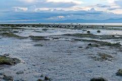 Havsvatten går tillbaka yttre i eftermiddagen Arkivbilder